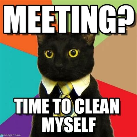 Meeting Meme - meeting business cat meme on memegen