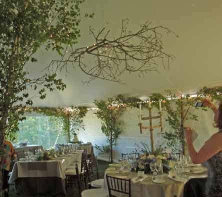Maine Weddings Celebrations/ Tree Decor / Theatrical