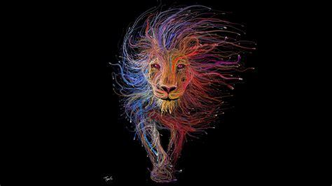 wallpaper colorful lion lion colorful digital art animals black