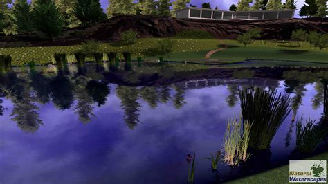 pond design by hydrologists and aquatic biologists