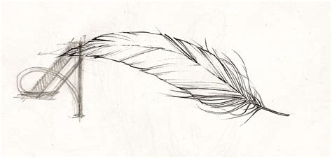 tattoo feather sketch adelaida art illustration and craft blog of aleksandra