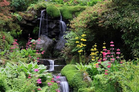 photos of gardens bodnant garden snowdonia information
