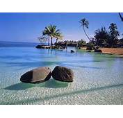 If Your Thinking Of Taking A Tropical Vacation But Are Bit Short On