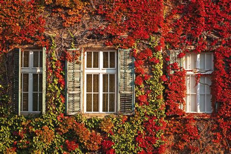 fall house six things you can do to your home in the fall to prepare for winter