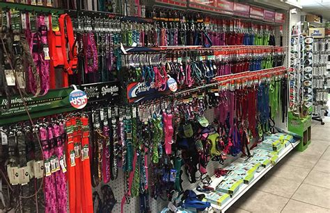 suncoast pets pet store and supplies panama city beach