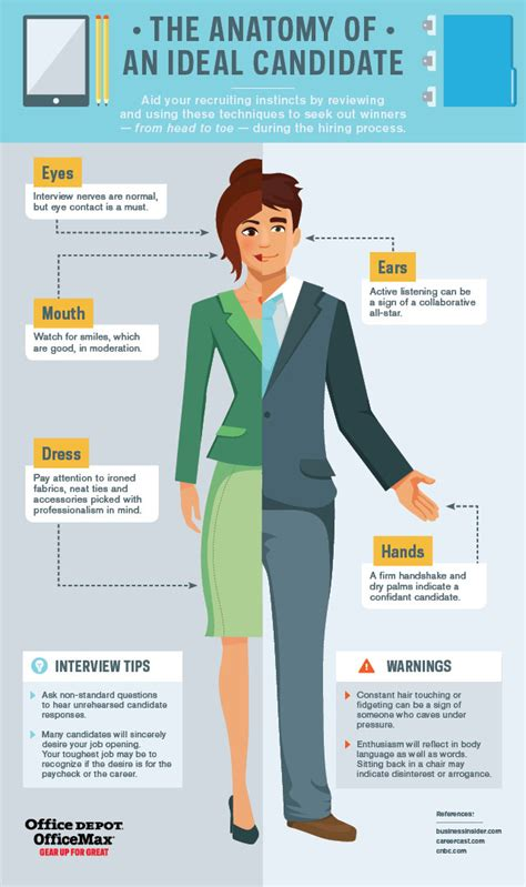 Office Depot Hiring Age The Anatomy Of An Ideal Candidate Infographic