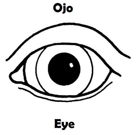 color de los ojos dibujos para colorear imagixs dibujos de las partes del ojo para colorear imagui