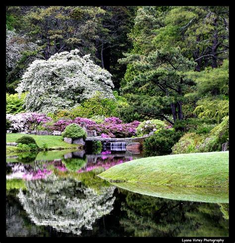 Bar Harbor Botanical Gardens by 208 Best Images About Visit Me Maine On