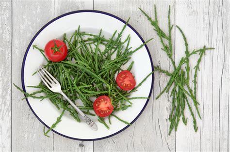 cucinare le alghe come si cucinano le alghe le ricette de la cucina italiana