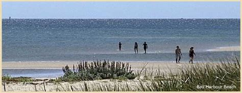 from logan to cape cod bay harbour cape cod s premiere oceanfront colony