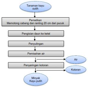 Minyak Kayu Putih Ayam 301 moved permanently