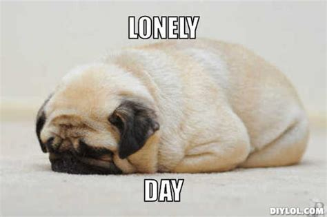 Feeling Lonely Memes - so lonely meme 28 images i used to be so lonely memes