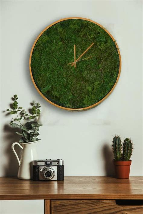 cool spring moss outdoor  indoor decor ideas digsdigs