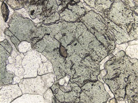 atlas of rock forming minerals in thin section diopside thin images frompo 1