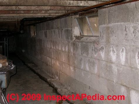 white fuzzy mold on basement walls mineral efflorescence water stains salts faqs