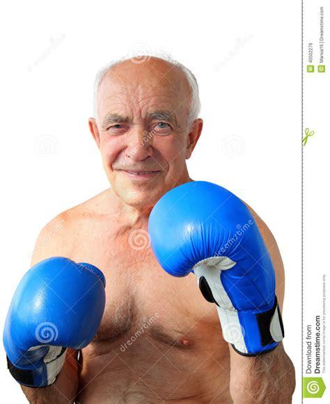 oldest boxer senior boxer stock photo image 40502276