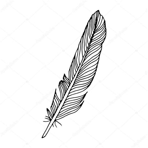 Writing Feather On Simple White Background Stock Vector