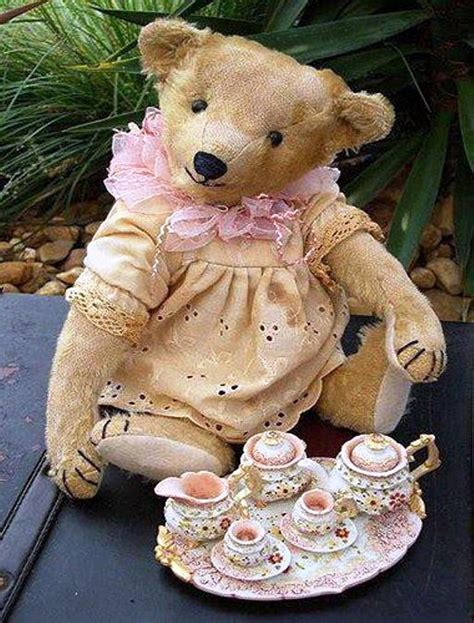 Teddy Cottage by 483 Best Images About Teddy On Rosa