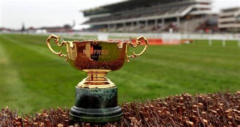 Gold Cup Sweepstake - gold cup 2015 sweepstake kit heart gloucestershire