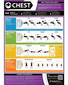 multi workout chart chest expander exercise chart