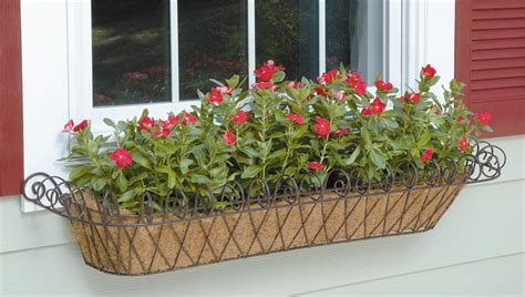 large window box window box large with coco liner
