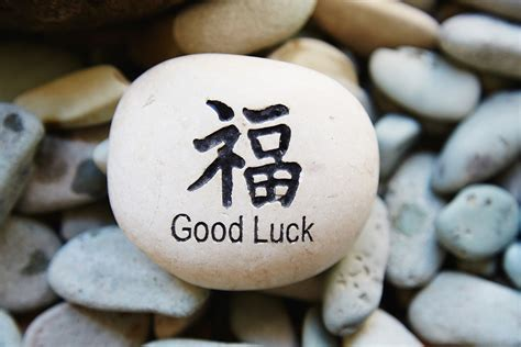 gud luck feng shui lucky number of fish in a tank lovetoknow