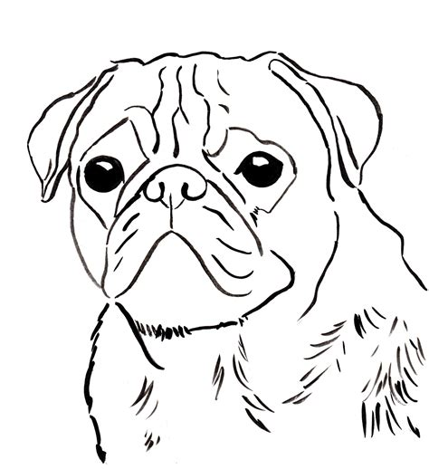 coloring pages of pugs dogs pug coloring pages coloringsuite