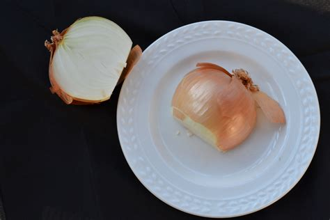 onions in bedroom when sick onion in the bedroom onions in bedroom when sick scifihits com