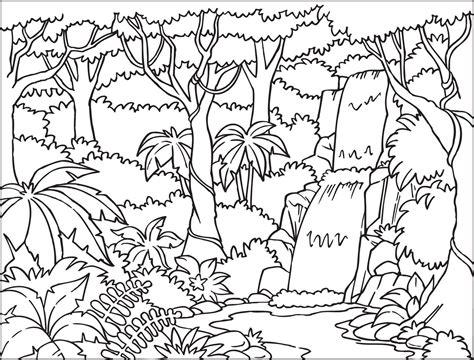 Rainforest Background Coloring Page   rainforest coloring pages coloringpages321 com