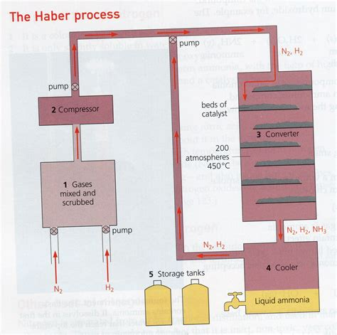 haber bosch process diagram the process the steps the haber bosch process