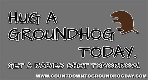 groundhog day countdown hug a groundhog today get a rabies tomorrow ecard
