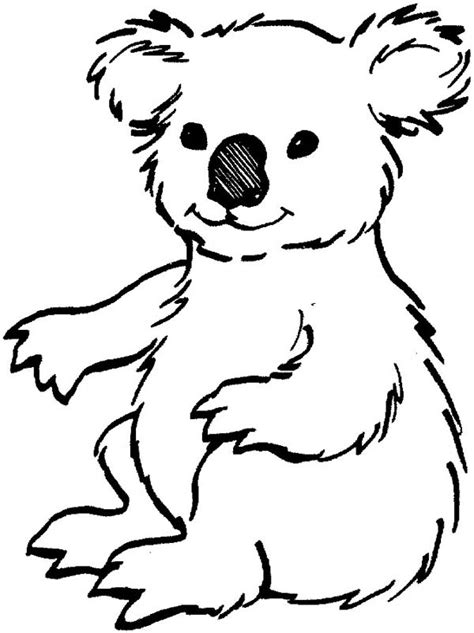 printable koala coloring pages 14 kids coloring pages koala print color craft