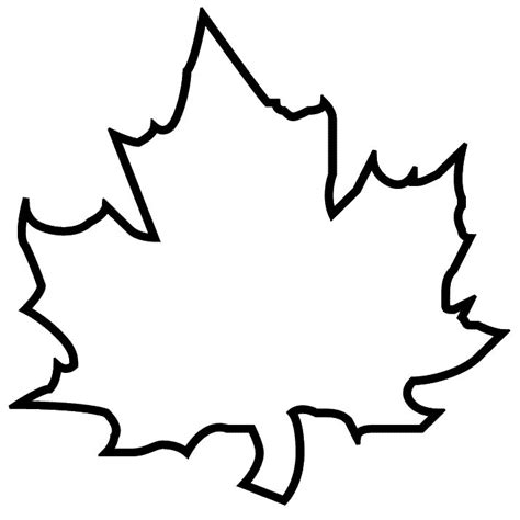 leaf coloring pages for preschool leaf pictures for kids az coloring pages
