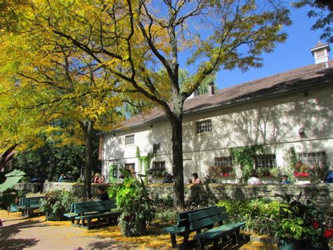 botanic garden toronto visiting the toronto botanical gardens ridler studios