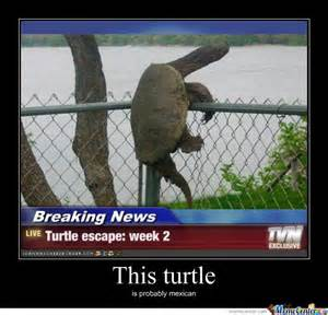 Turtle Meme - escaping turtle by justaguy123 meme center