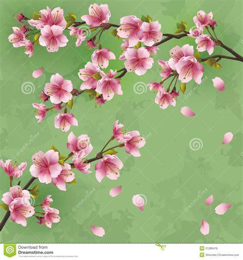 japanse tekeningen bloemen uitstekende achtergrond met japanse kersenboom sakur