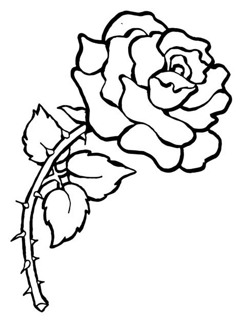 coloring sheet of rose free printable roses coloring pages for kids