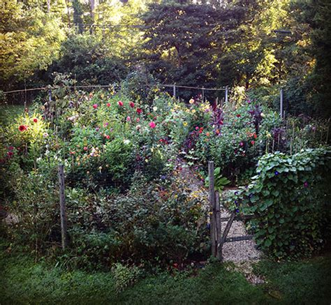 cut flower garden design a potter s studio gardens and home in connecticut