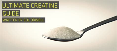5g of creatine the ultimate creatine guide for maximum gains