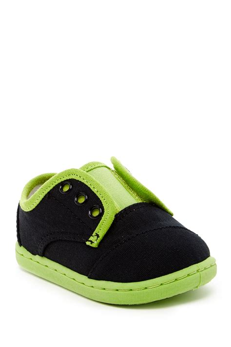 toms baby shoes toms paseo canvas shoe baby toddler kid