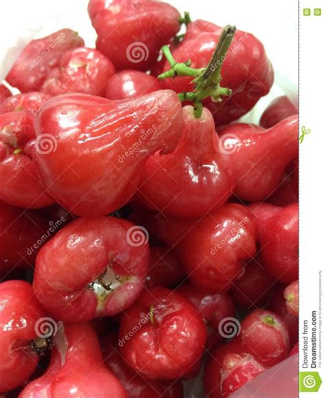 apple thailand fruit rose apple thai stock photo image 72656804