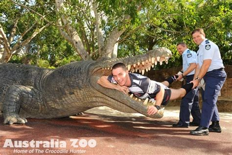 Australia Zoo - About Us - Zoo News - Never smile at a ...