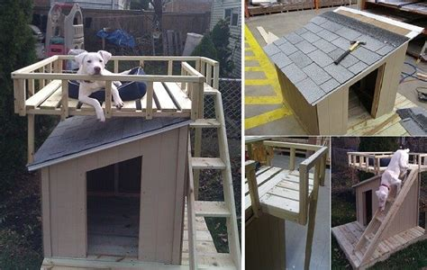 home depot dog house plans dog house plans home depot inspirational diy dog house with roof top deck new home