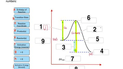 label the energy diagram for a two step reaction label the energy diagram for a two step react clutch prep