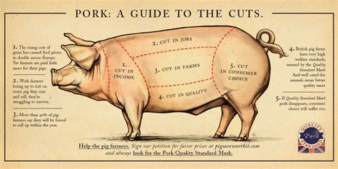 pig diagram cuts http www pigsareworthit co uk archive images press