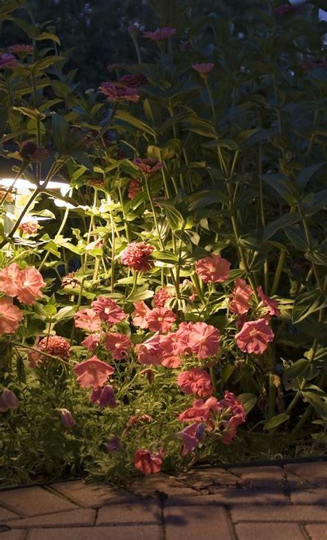 blumen beleuchtung kyson 50er led solar lichterkette blumen garten au 223 en lila
