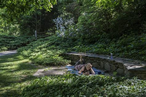 Botanical Gardens At Asheville Best Kept Secrets Asheville The Coolest Town In The Us News Observer News Observer