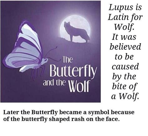sle themes of a story 45 best images about lupus awareness on pinterest