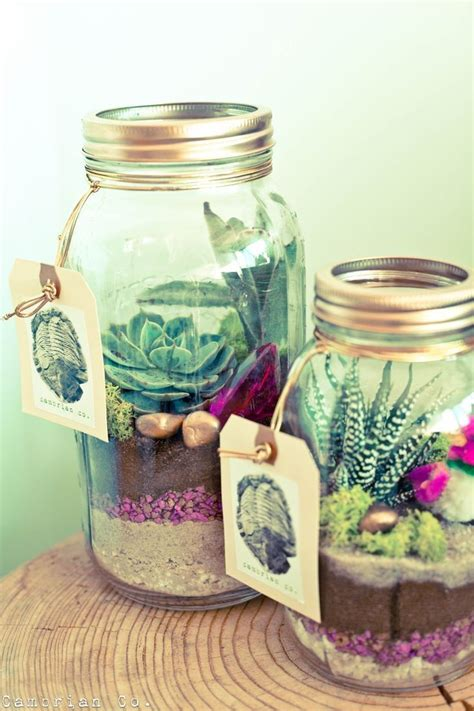 Room Decor Jars by Where To Buy Diy Jar Succulent Plants Room D On