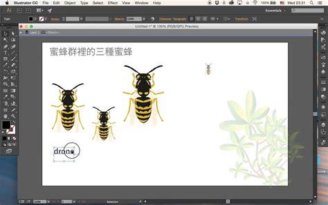 tutorials for adobe illustrator cc 2015 new feature of adobe illustrator cc 2015 infographic